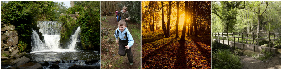 Forest School at Penllergare Valley Woods