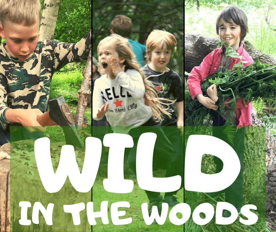 wild in the woods - forest school activities in north wales