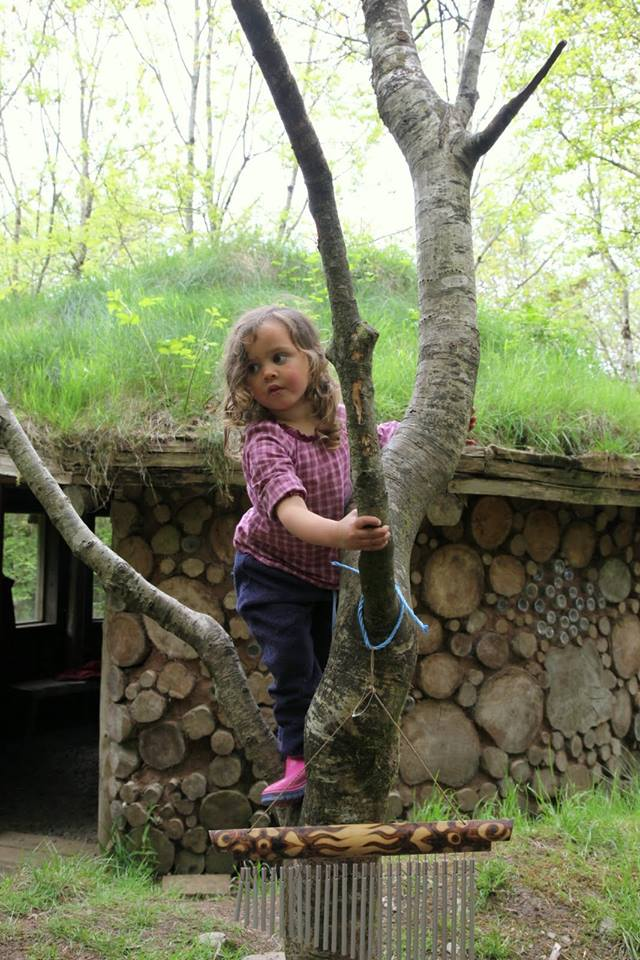 girl climbing tree at forest school