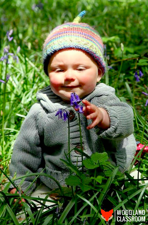 forest kindergarten bluebell baby