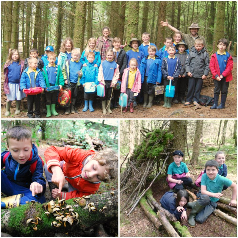 wild curriculum for schools learning outdoors