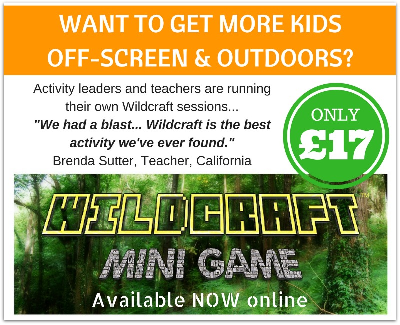 wildcraft mini game sales picture