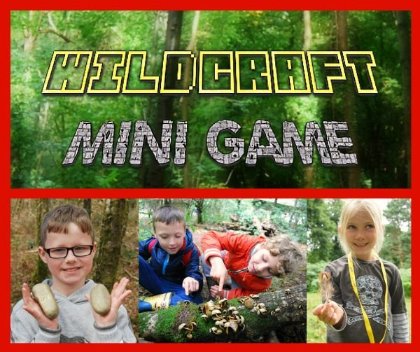 wildcraft mini game - product thumbnail