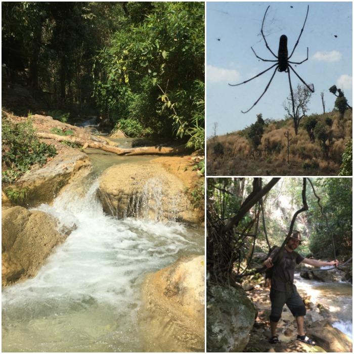 bushcraft jungle trek