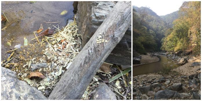 jungle hill tribe river workshop