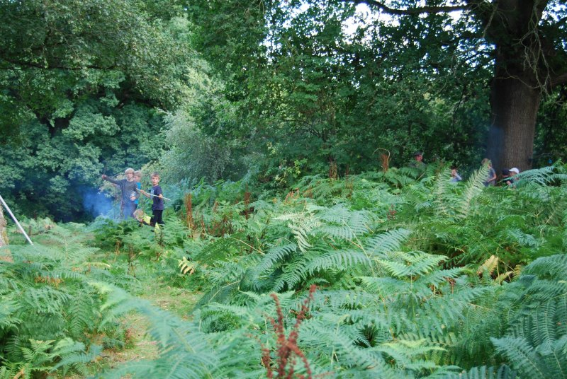 chirk castle estate forest school