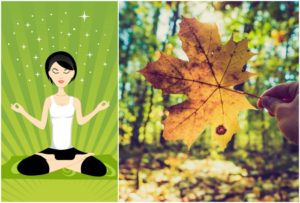 Mindfulness in Nature (4 week course)