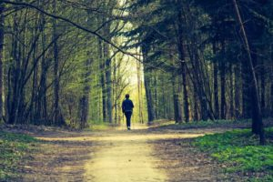 Mindfulness in the Woods: Focus on Living with Pain – SOLD OUT!