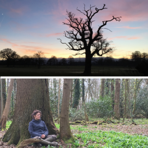 learn mindfulness in woodlands wales