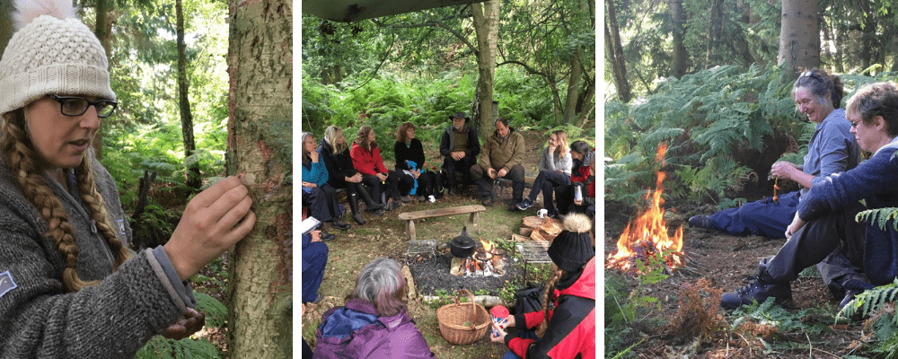 nature connection workshops for adults