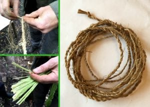 natural cordage - bushcraft in north wales