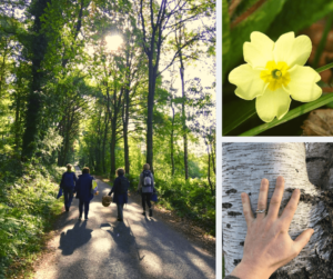 spring equinox guided walk in north wales