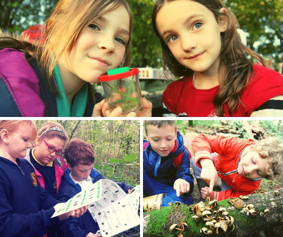 wild detectives: nature learning for kids in north wales
