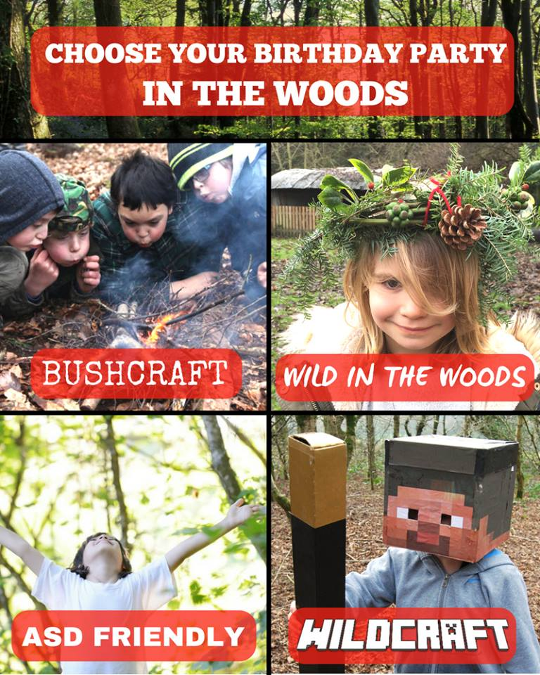 bushcraft and woodland birthday party