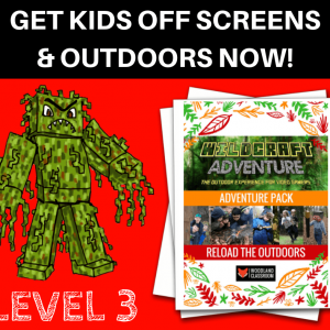 wildcraft adventure pack level 3