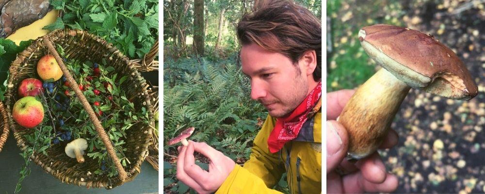 autumn foraging and wild food walk