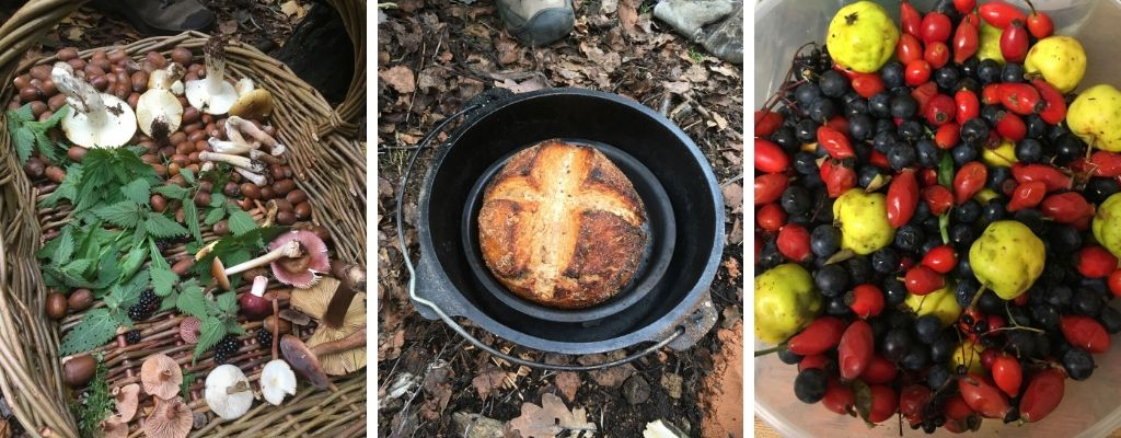 wild food & foraging course in north wales - mushrooms