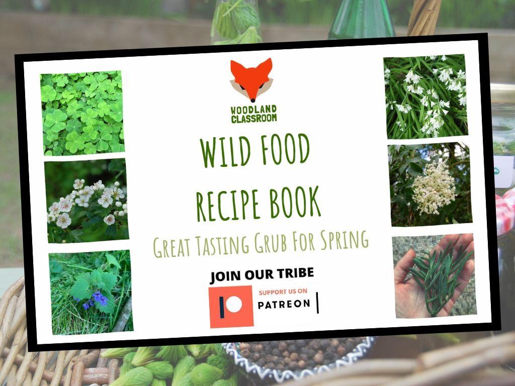 spring wild food recipe book