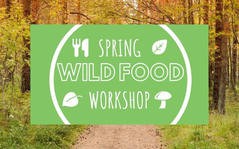 wild food workshop april - may