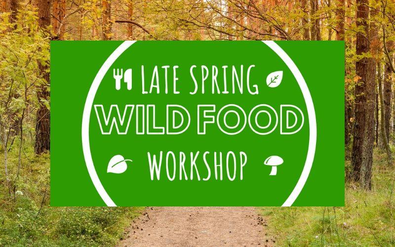 wild food workshop may - june